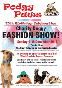 Charity doggy fashion show