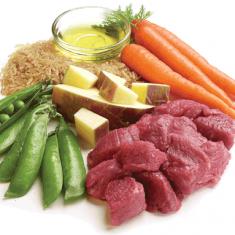 Raw Diet (BARF)