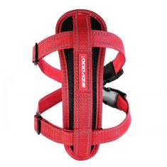 Chest plate red