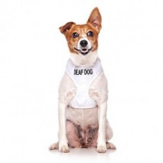 Deaf vest harness